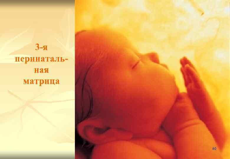 Что ребенок чувствует в утробе матери, когда она плачет, может ли плод испытывать боль?