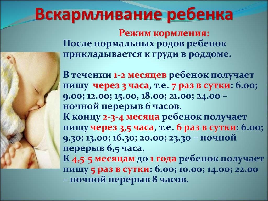 Как часто кормить новорожденного грудным молоком, смесью