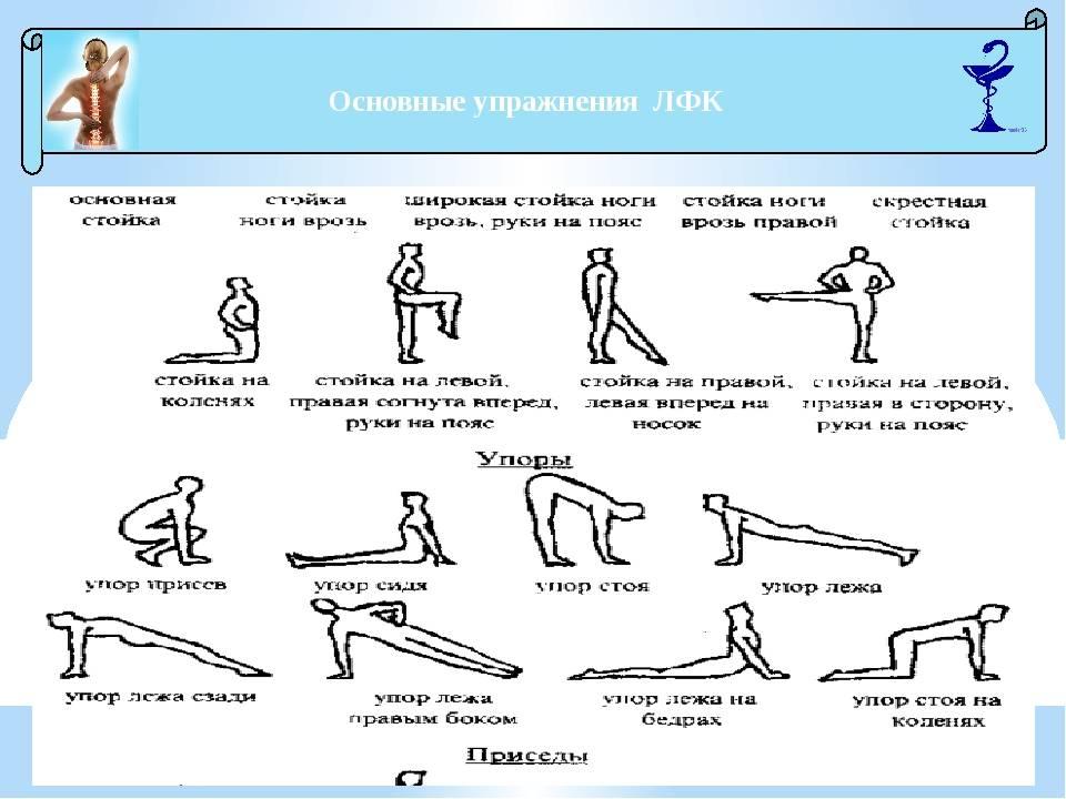 Лфк у детей при сколиозе: комплекс упражнений с описанием
