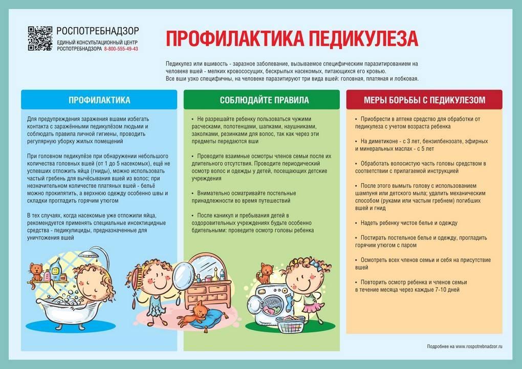 Вши у детей: источники заражения и симптомы