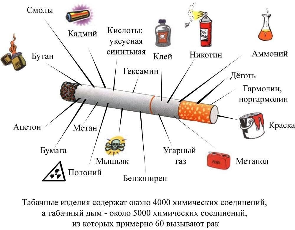 Можно ли курить сигареты и кальян при грудном вскармливании и как это отразится на молоке