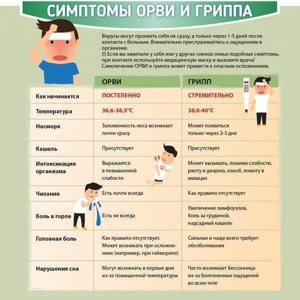 ➤ первые признаки инфекции и как понять, что заболеваешь простудой?