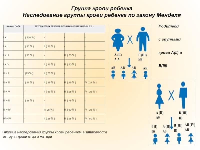 Пол ребенка по группе крови родителей: определение, таблица, рассчитать, как узнать будущего, влияет ли, зависит, высчитать, кто будет мальчик или девочка