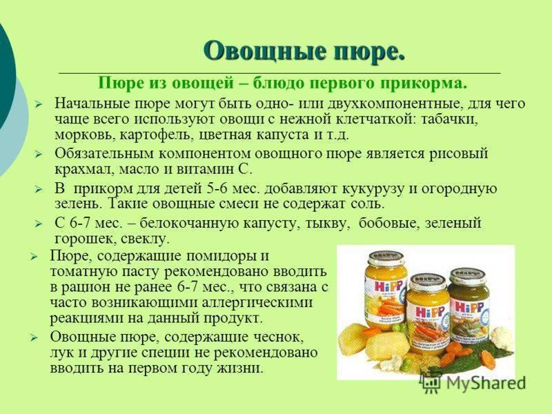 Введение прикорма: 12 советов педиатра, главные правила, продукты по месяцам, профилактика пищевой аллергии