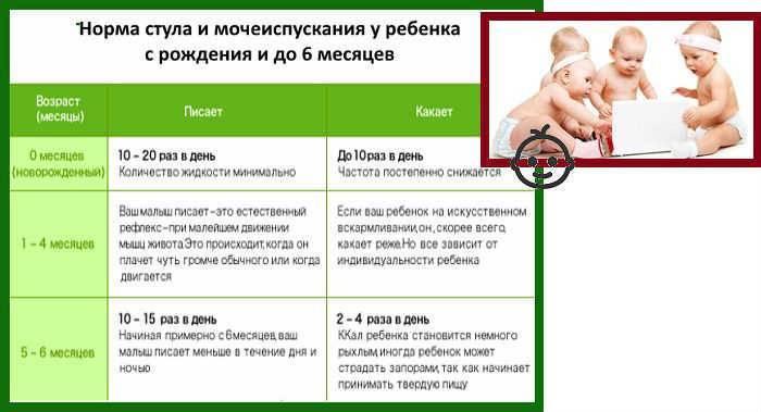 Сколько должен какать грудничок и малыш на искусственном кормлении