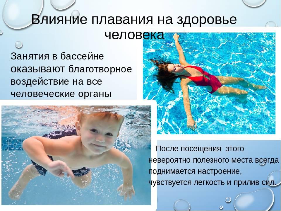 Обучение плаванию детей и взрослых в бассейне   индивидуальные занятия плаванием в москве