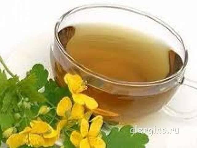 Трава крапива и листья крапивы - лечебные свойства(отвар, настой, настойка на водке)