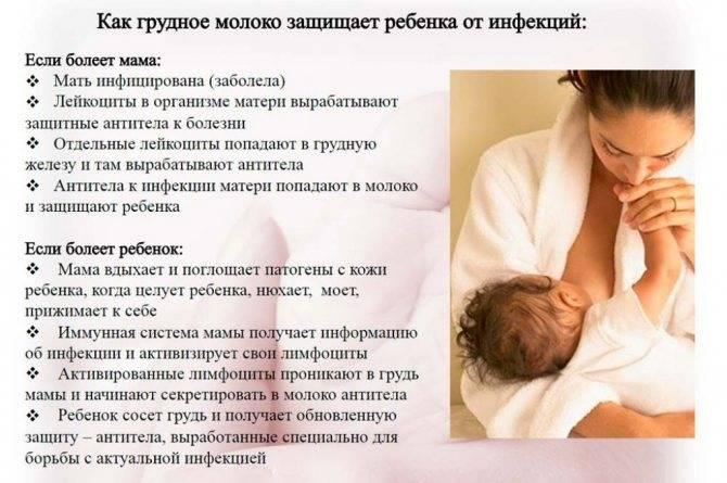 Квас при грудном вскармливании, можно ли его пить кормящей маме
