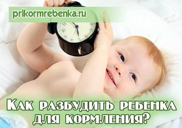 Надо ли будить новорожденного ребенка для кормления и купания, если он долго спит? почему новорожденный не спит после купания?