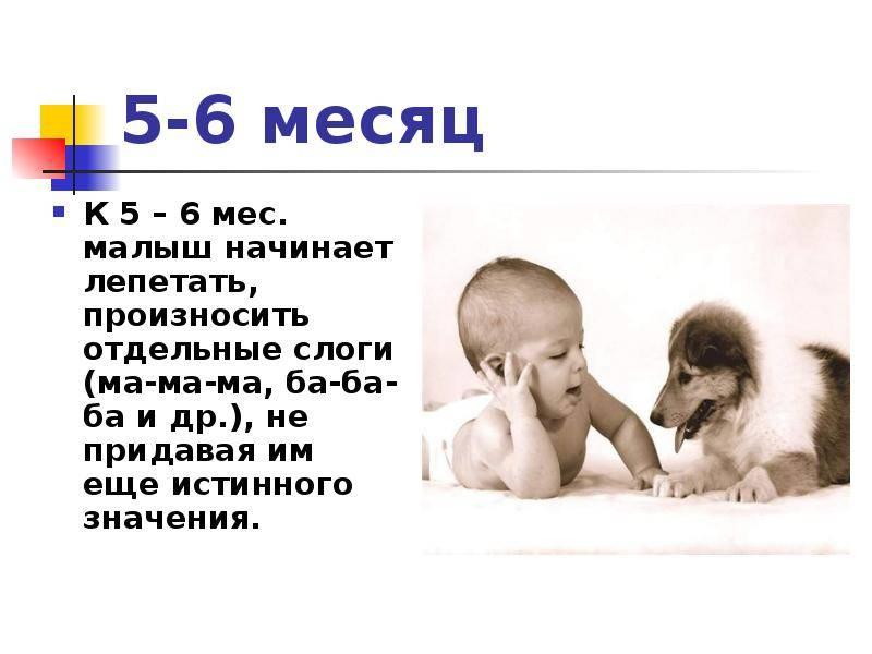 Важные периоды в развитии речи, или когда ребенок начинает говорить первые слова и предложения