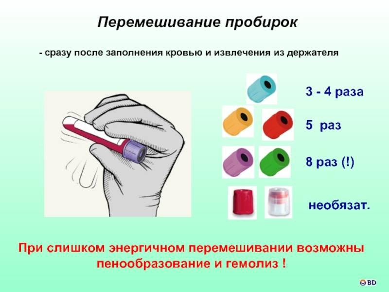 Как правильно сдавать общий анализ крови ребенку - натощак или нет? расшифровка и нормы результатов - parentchild.ru
