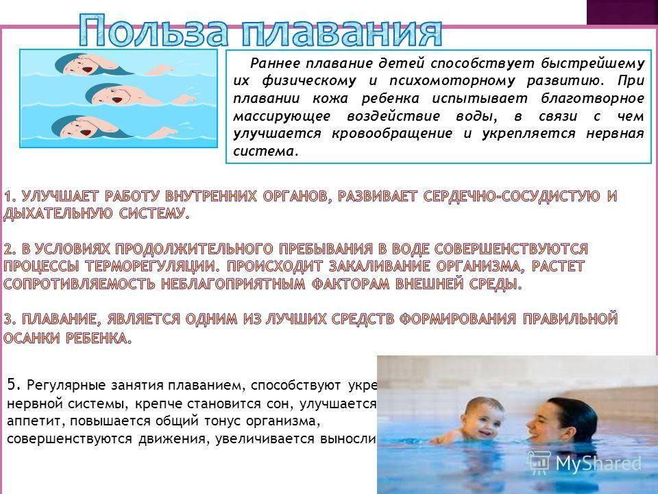 Плавание для ребенка: в чем плюсы и минусы такого занятия