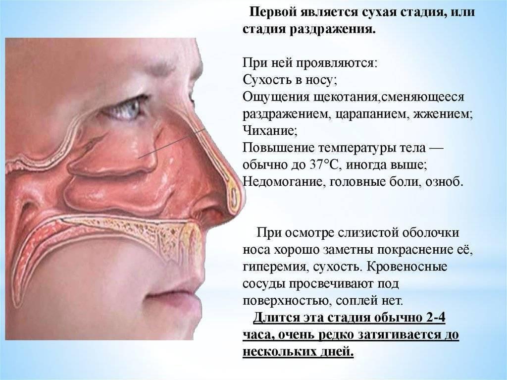 Чем лечить кашель ребенка от соплей по задней стенке горла - мурманская городская поликлиника № 5