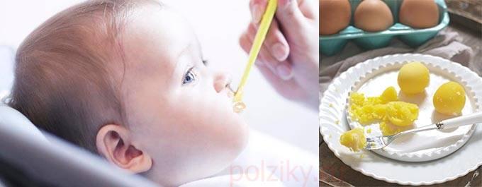 Как вводить и со скольки месяцев можно давать желток грудничку