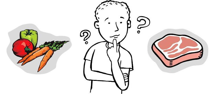 Что делать, если ребенок не желает есть мясо   что происходит с организмом и как компенсировать недостаток белков и аминокислот