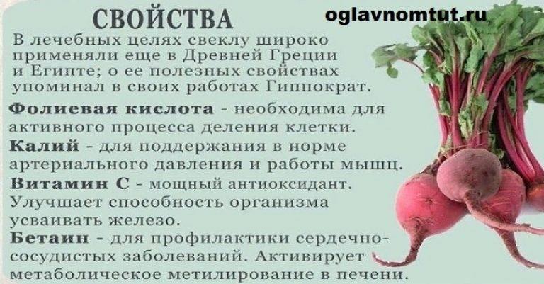 Свекла - уникальный целебный корнеплод   компетентно о здоровье на ilive