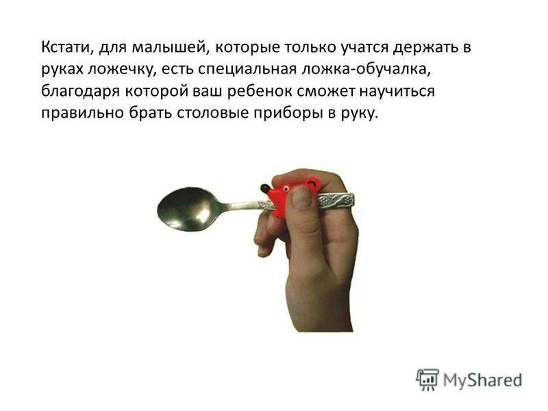 Как научить ребёнка кушать ложкой самостоятельно комаровский: советы главного педиатра по обучению карапуза