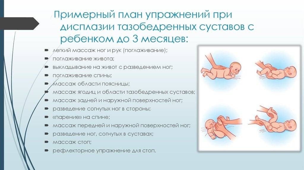 Дисплазия тазобедренного сустава (тбс) у собак и кошек