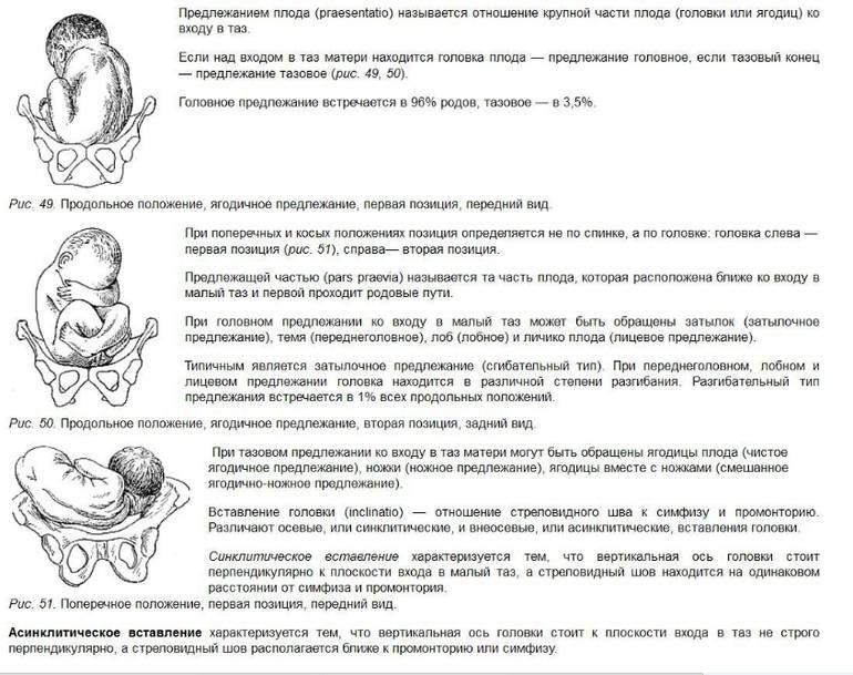 Срок беременности 1 неделя: врач рассказала об изменениях и признаках, возникающих сразу после зачатия
