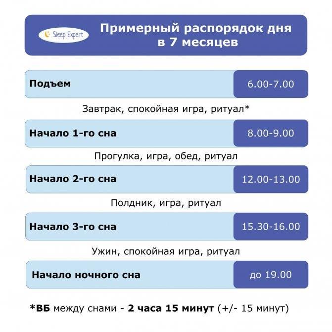 Примерный режим дня ребенка в 9 месяцев по часам