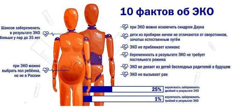 Экстракорпоральное оплодотворение: этапы по дням цикла - статья репродуктивного центра «за рождение»