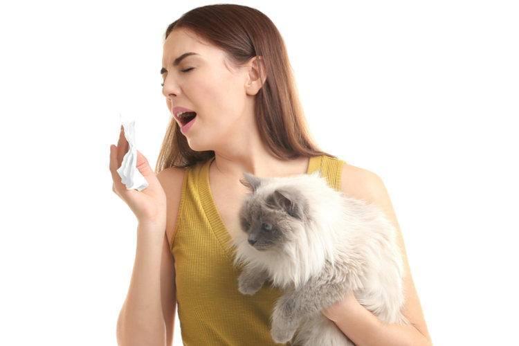 Причины и симптомы аллергического ринита
