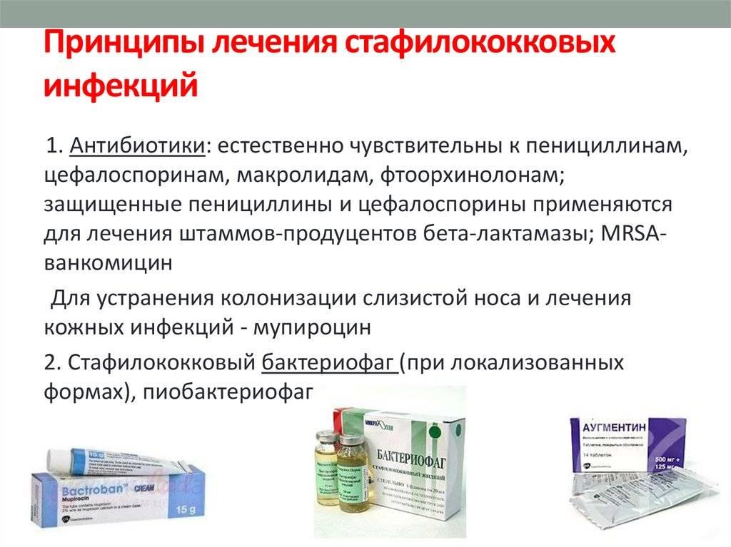 Кожный стафилококк - симптомы, лечение, исследование. что такое staphylococcus epidermidis? * клиника диана в санкт-петербурге