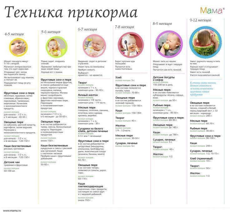 Cо скольки месяцев можно начинать прикармливать ребенка, таблица введения прикорма в зависимости от типа питания малыша