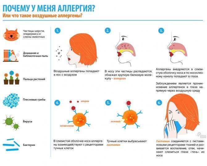 Может ли быть температура при аллергии - medical insider
