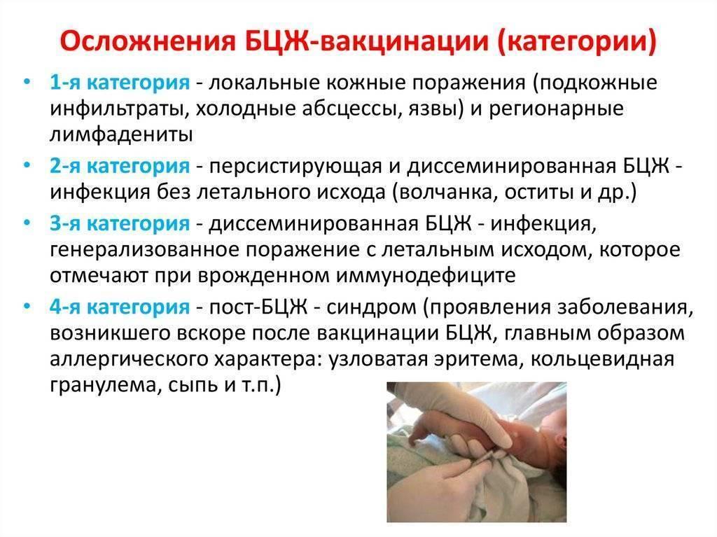 Бцж, или ''самая заметная'' прививка. прививка бцж: противопоказания и осложнения