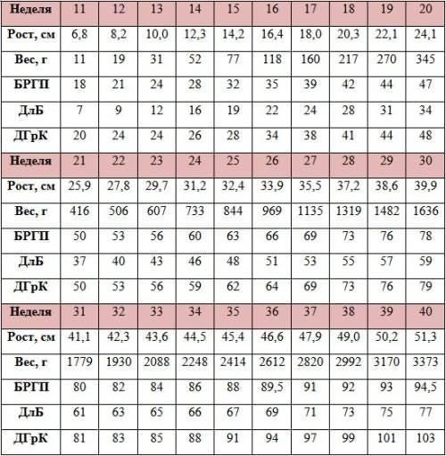 Бпр плода по неделям: нормы в таблице, окружность головы и лзр при беременности