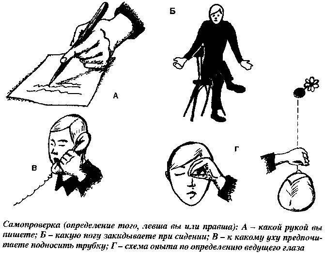 Люди-левши: особенности, интересные факты - psychbook.ru
