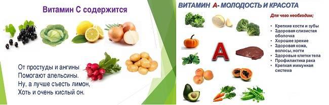 Список витаминов для памяти, внимания и умственной активности детей: комплексное улучшение работы мозга школьника