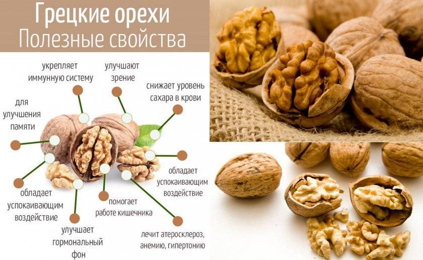 Грецкий орех: лечебные свойства   food and health