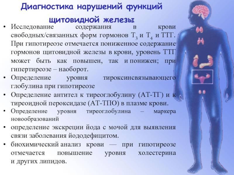 Взаимосвязь ттг и пролактина в женском организме, роль каждого гормона и причины отклонений показателей от нормы