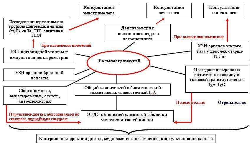 Целиакия: причины, симптомы и лечение (диета) - сибирский медицинский портал