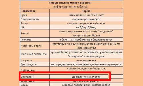 Анализ мочи по зимницкому | медицинский центр «президент-мед»