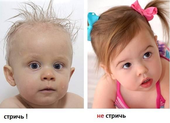 От пушка до локонов... волосы малыша и уход за ними. когда у ребенка меняется цвет волос