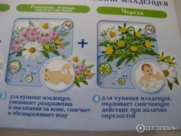 Как развести ромашку для купания новорожденного? | медик03
