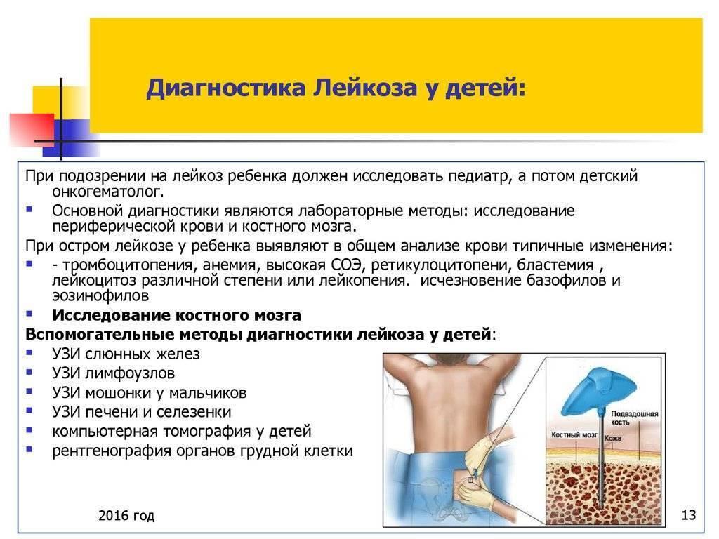Каковы симптомы и признаки лейкемии? : lifekorea.ru