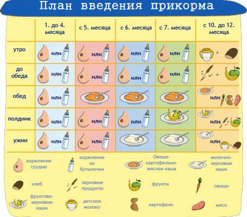 Первый прикорм с 4-5 месяцев: продукты, примерное меню