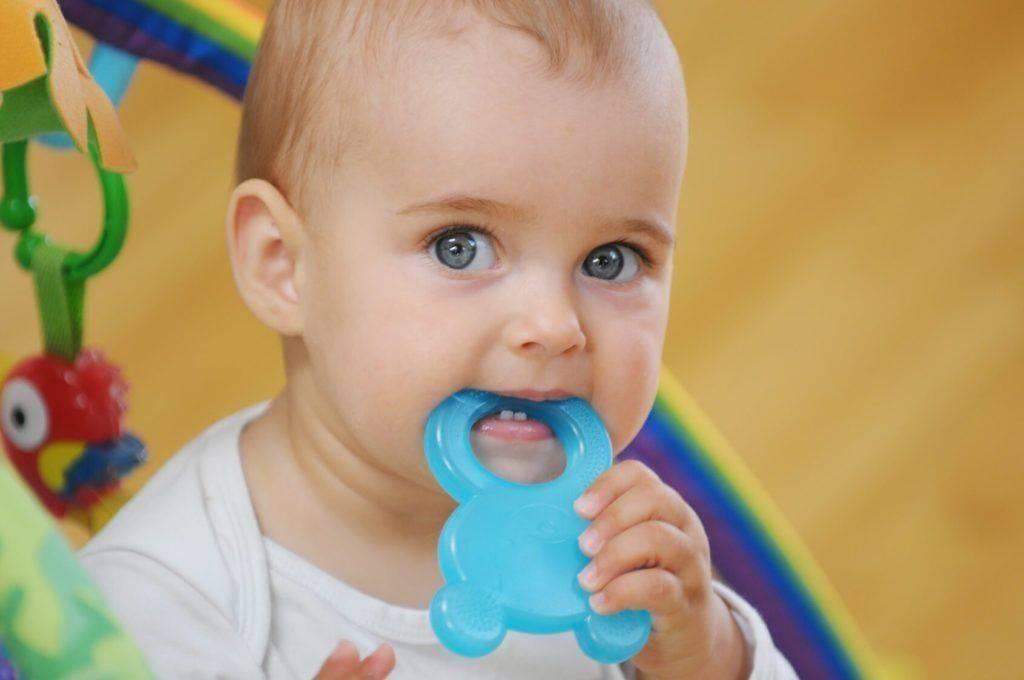 Как выбрать лучший прорезыватель для зубов (с фото)